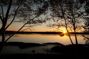 Cobscook State Park, Maine