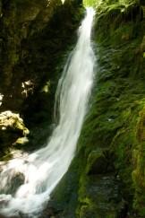 Dixon Falls, Fundy Park
