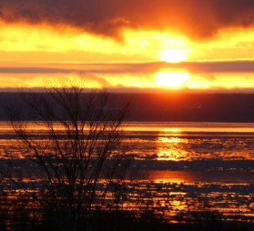 Sunrise over the Bay of Fundy -- ice in foreground